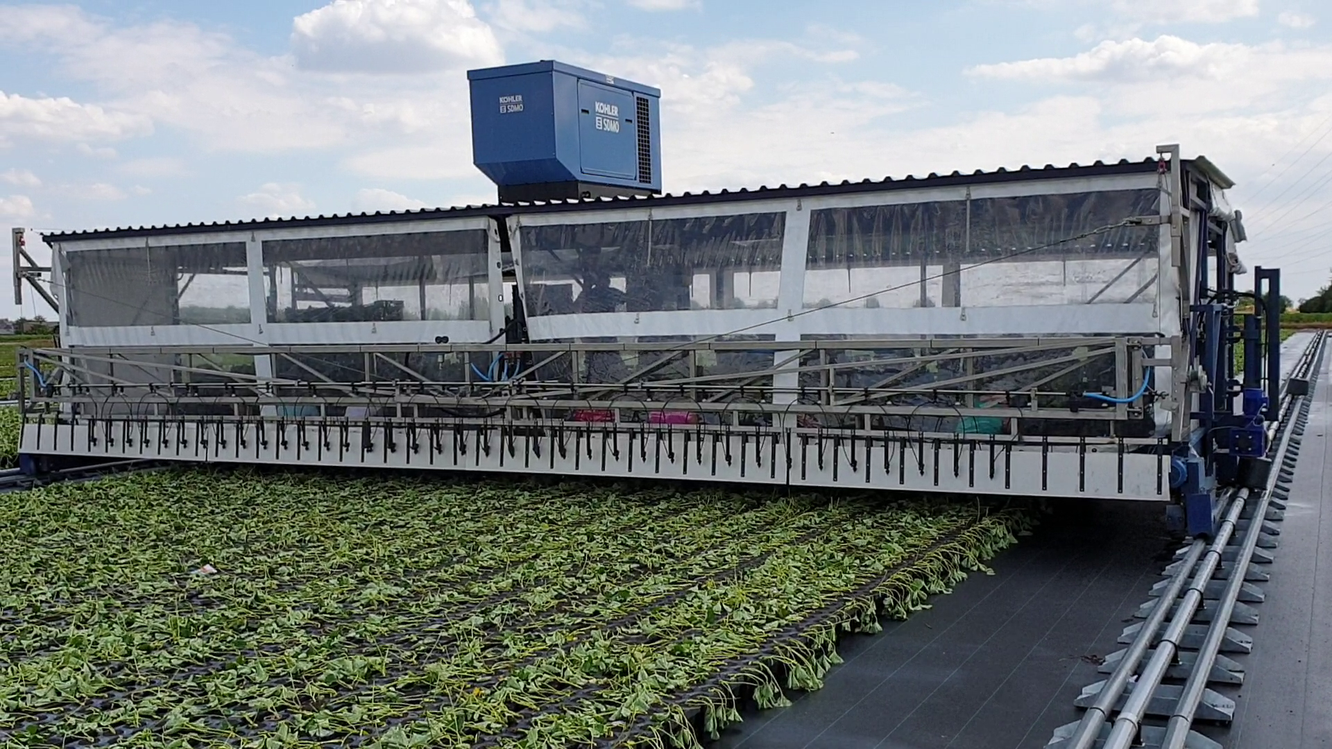 Rail system for conventional tray fields and greenhouses